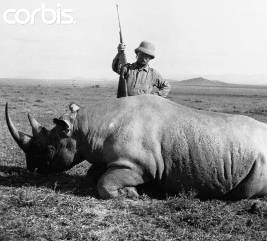 T. Roosevelt with Rhino, 1909.