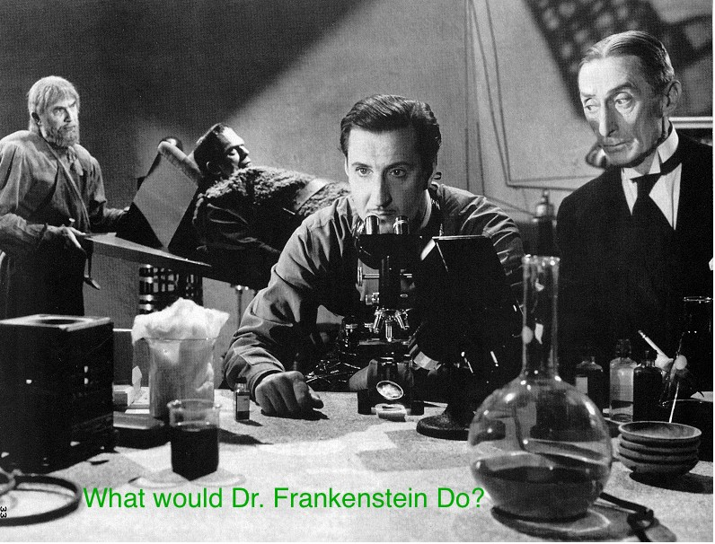 "It's often helpful to ask yourself, ""what would Dr. Frankenstein do?"""