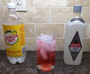The R___: gin tonic and grenadine