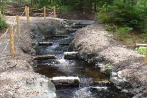 A series of weir dams on Blackman Stream, Maine. Mine would be about as tall, but somewhat further apart.